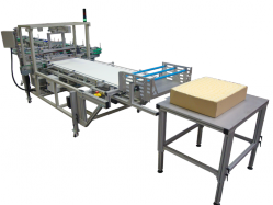 VZT23X Inverted tray style tray packer medium